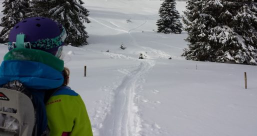 Backcountry Schwarzwald