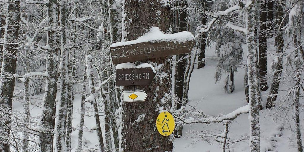 Weg zur Krunkelbachhütte