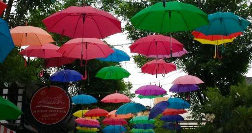 Kurioses aus Thailand