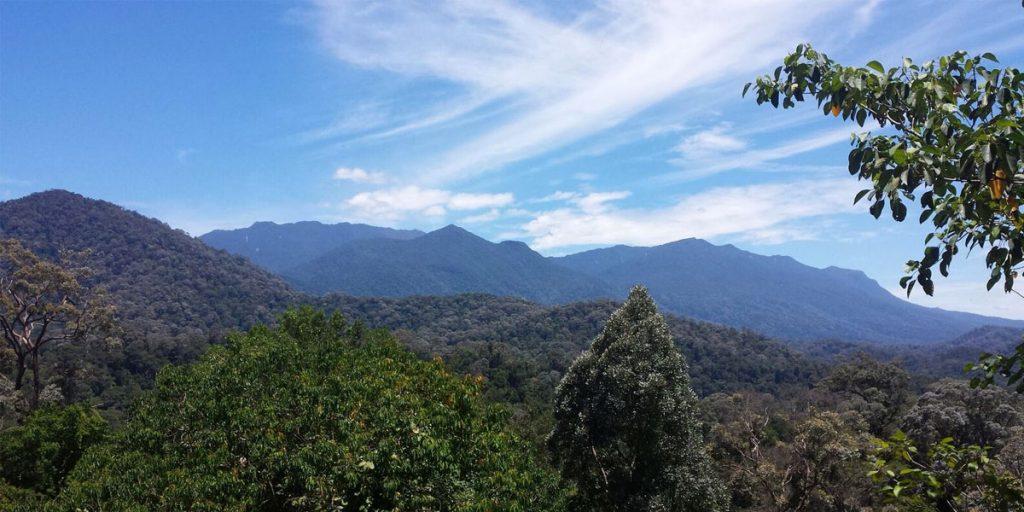 Gunung Tahan