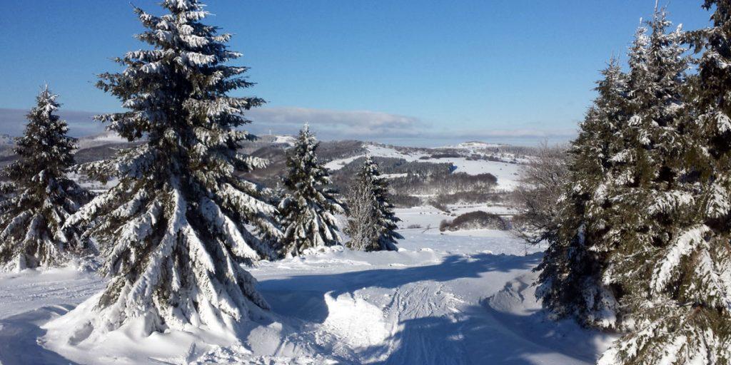 Arnsberg Winter