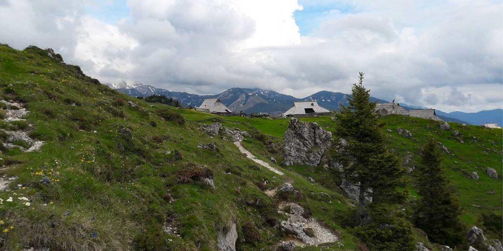 wandern-velika-planina