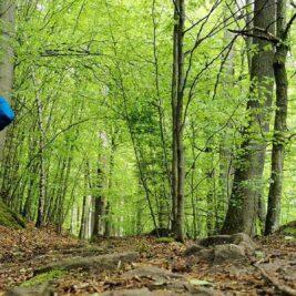 trailrunning-rhoen